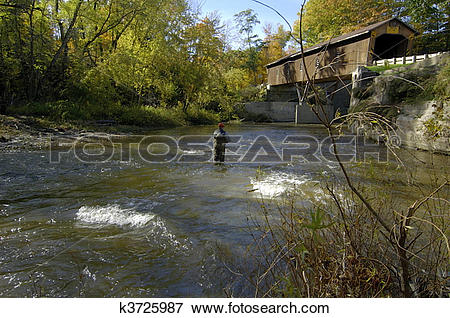 Picture of Shallow Stream Fishing k3725987.