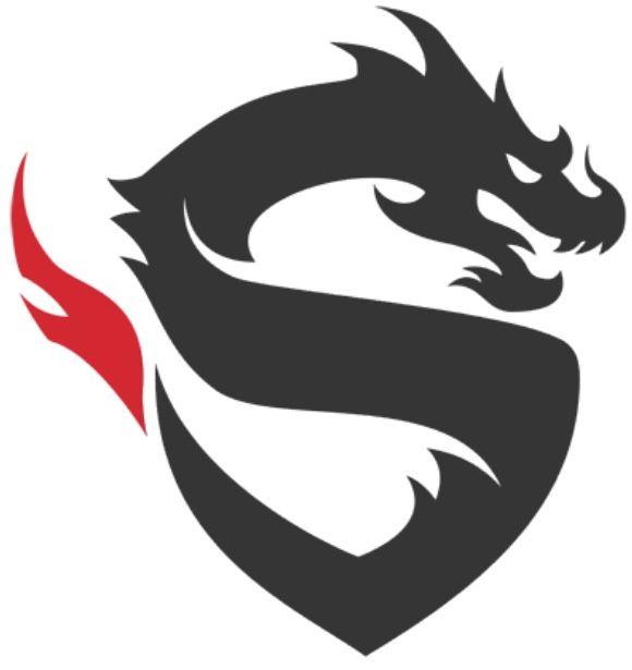 Shanghai dragons logo.