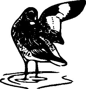Shank Clip Art Download.