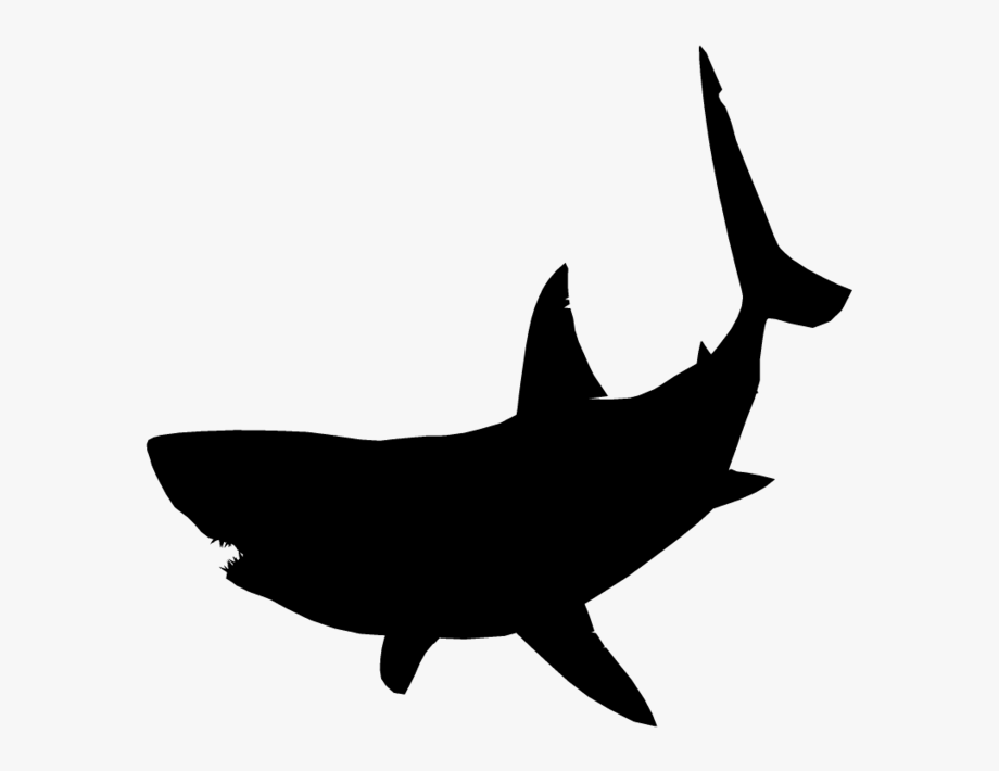 Great White Shark Clipart Jumping.