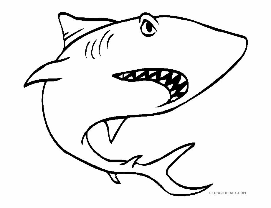 Black And White Shark Animal Free Black White Clipart.