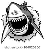 Shark Free Vector Art.