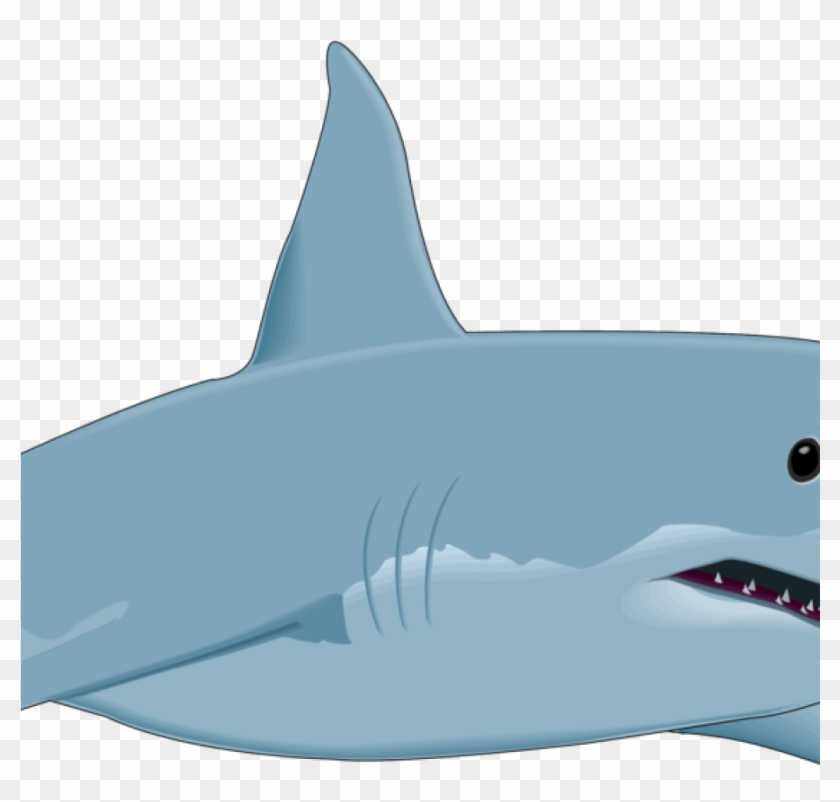 Free Shark Clipart Shark Clipart Shark Fish Clipart.