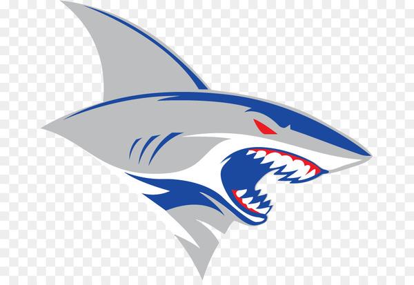 Shark, Logo, American Football, Fish PNG.