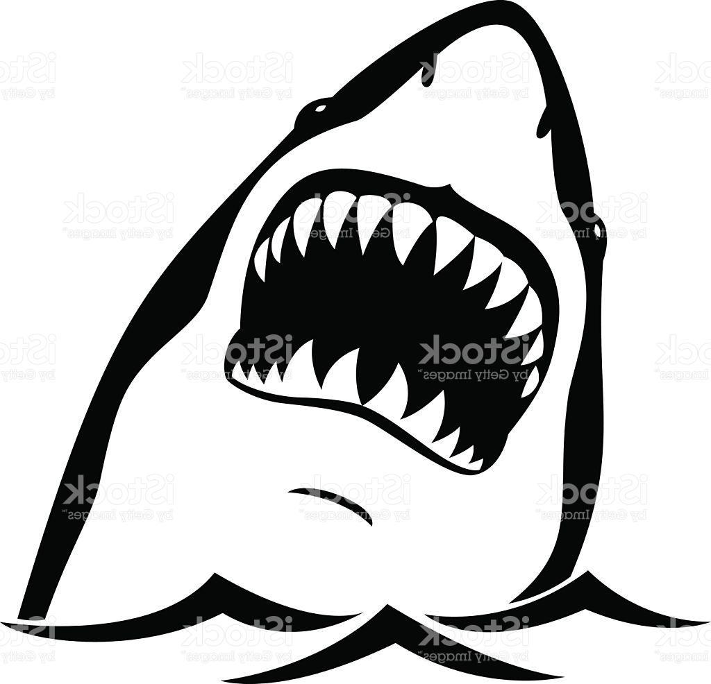 Shark Teeth Clipart.