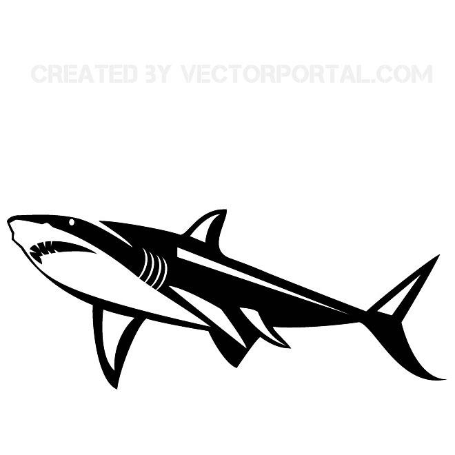 SHARK VECTOR GRAPHICS.