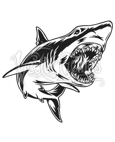Great White Shark Attack Clip Art.