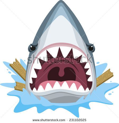 Shark attack with open jaws full of teeth and angry.