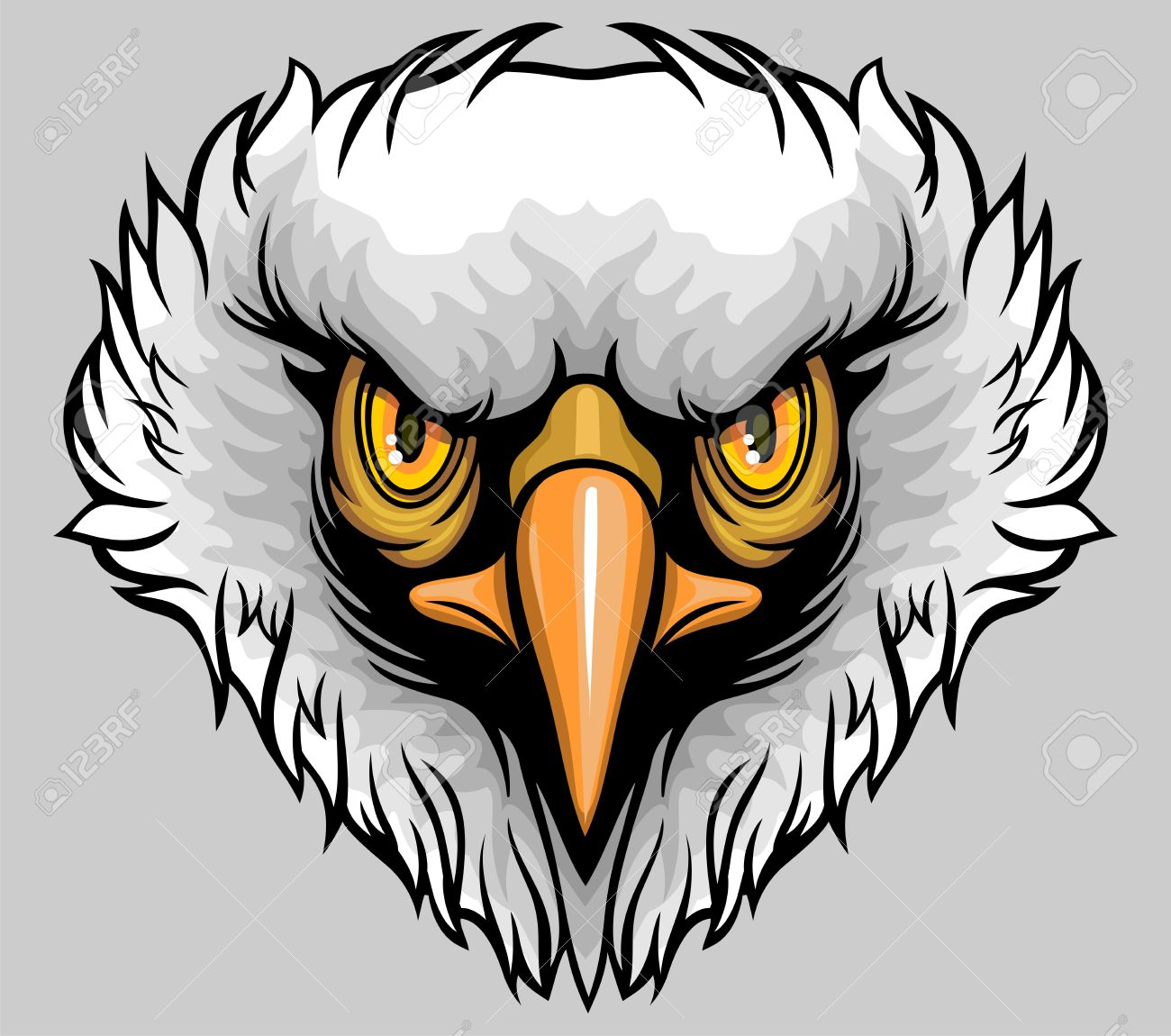 White Headed Eagle With Yellow Sharp Eyes Royalty Free Cliparts.
