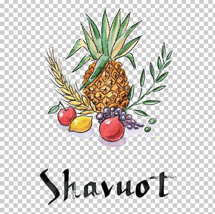Shavuot Sukkot Jewish Holiday PNG, Clipart, Ananas, Beth.