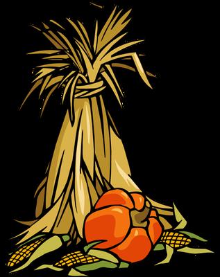 Corn Stalk Bundle PNG Transparent Corn Stalk Bundle.PNG.
