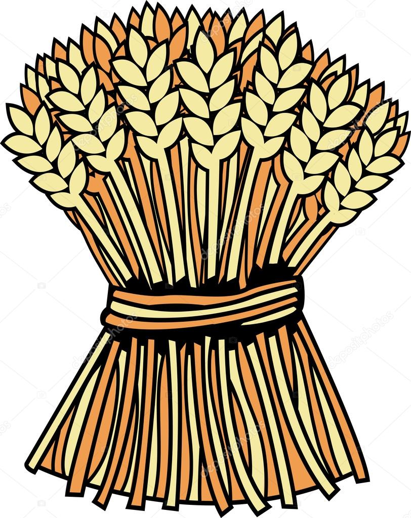 Sheaf of wheat — Stock Vector © zzve #45106709.