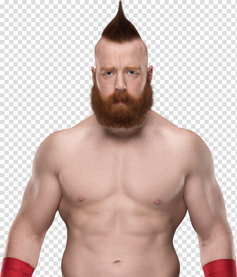 Sheamus WWE Championship WWE Raw World Heavyweight.