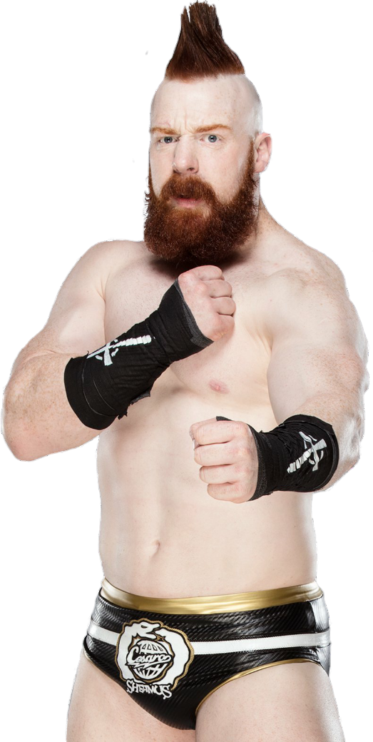 Sheamus PNG Picture.