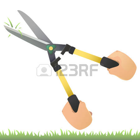 198 Grass Shear Stock Vector Illustration And Royalty Free Grass.