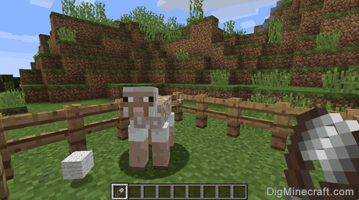 How to Shear a Sheep in Minecraft.