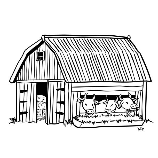 Cow In Shed Clipart.
