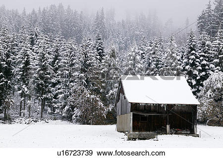 Stock Photograph of Old Shed in a Snowy Forest u16723739.