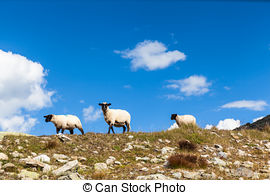 Stock Photo of Alps meadow in Switzerland.