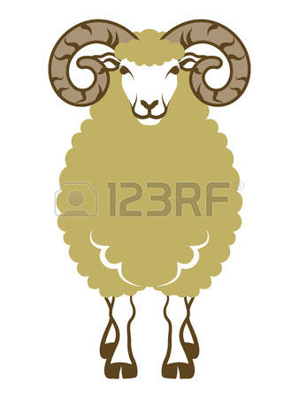 Sheep Horns Stock Photos & Pictures. Royalty Free Sheep Horns.