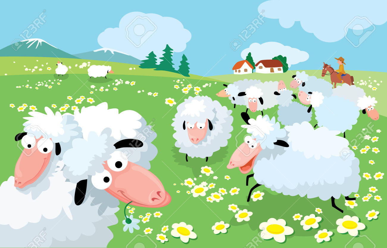 Sheep Breeding In High Mountains Royalty Free Cliparts, Vectors.