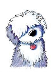 1000+ images about Love old english sheep dog!! on Pinterest.