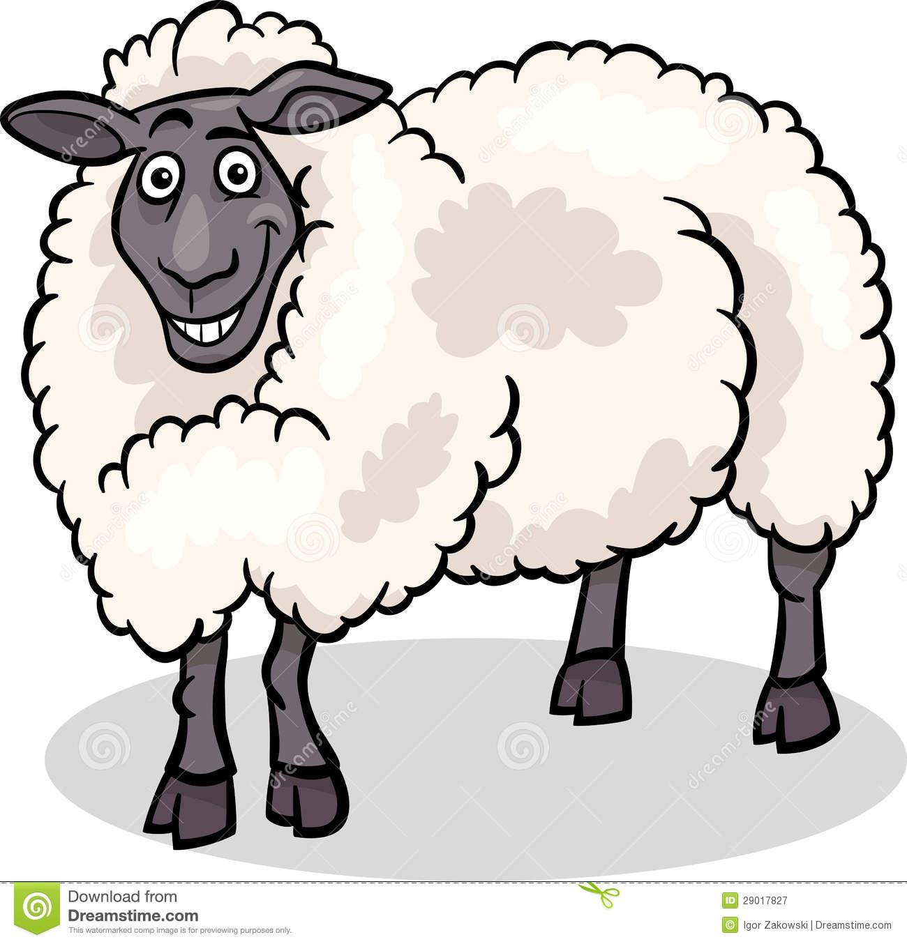 Sheep Farm Animal Cartoon Illustration Royalty Free Stock.