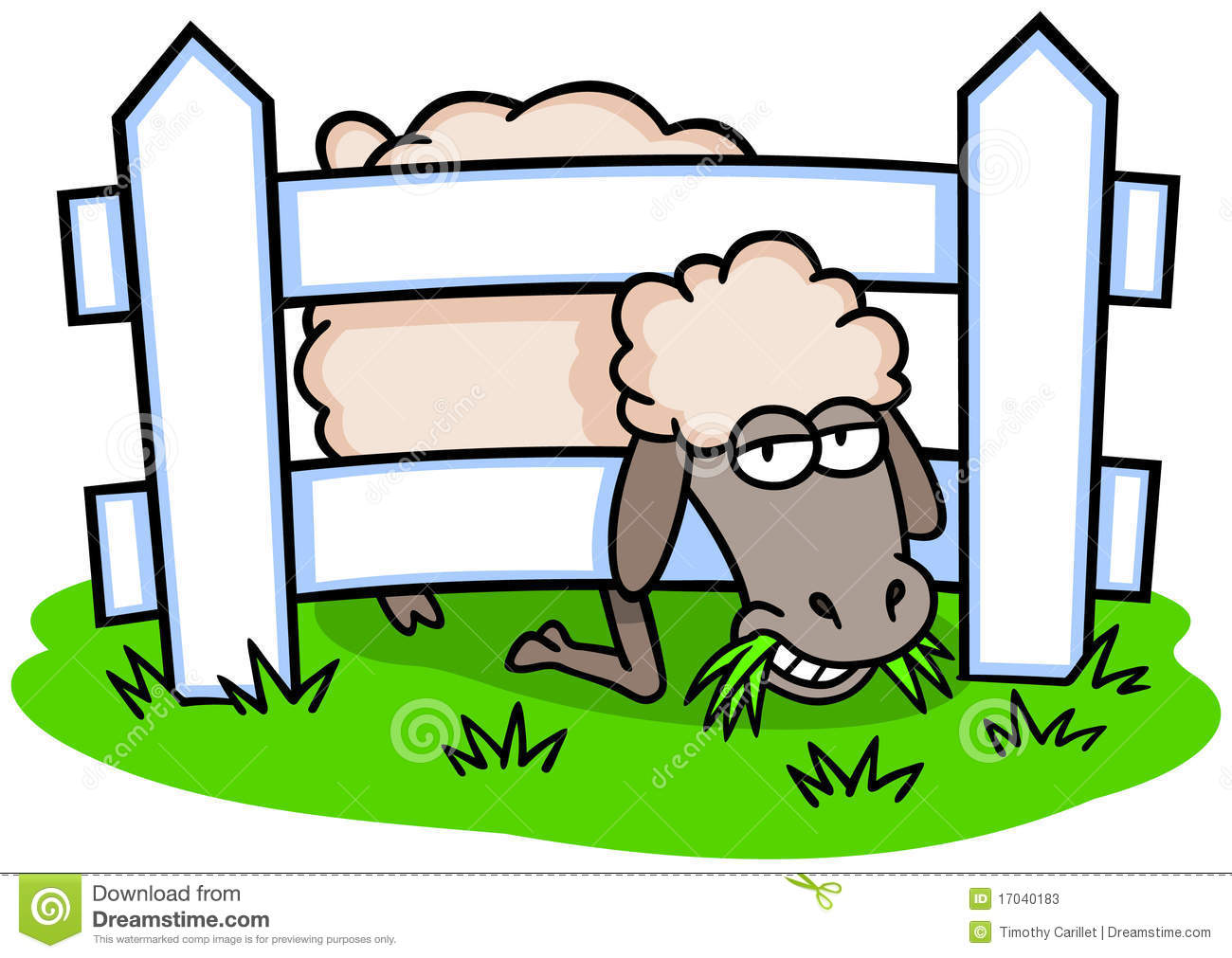 Sheep And Fence Stock Photos.
