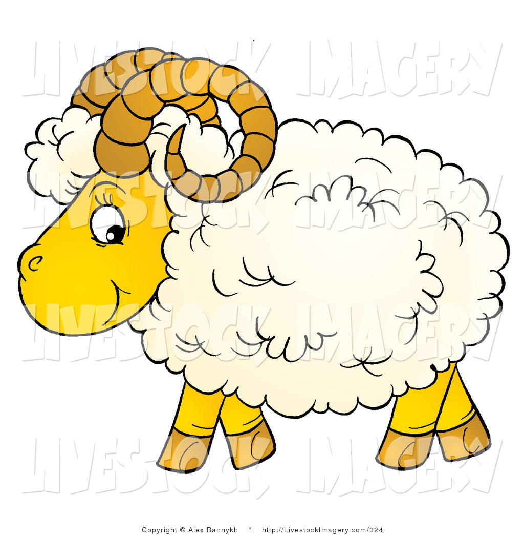 Sheep and wool clipart.
