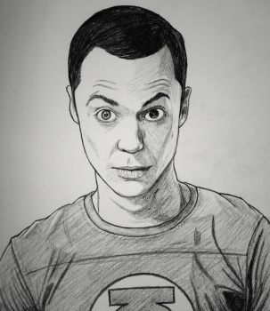 The Big Bang Theory favourites by Lizlovestoons12 on DeviantArt.