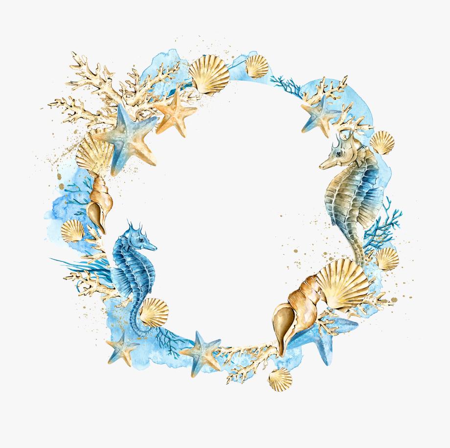 Seashells Clipart Watercolor.