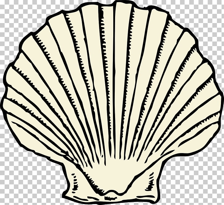 Clam Seashell Free content , Big Shell s PNG clipart.