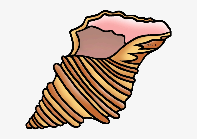 28 Collection Of Shell Clipart.