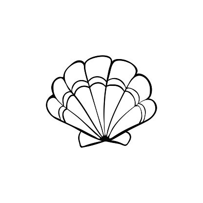 Sea shell icon Clipart Image.