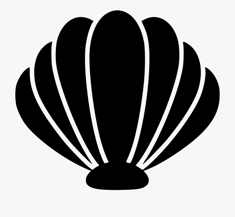 Sea Shell Png.