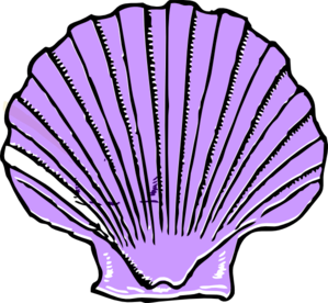 Free Shell Cliparts, Download Free Clip Art, Free Clip Art.
