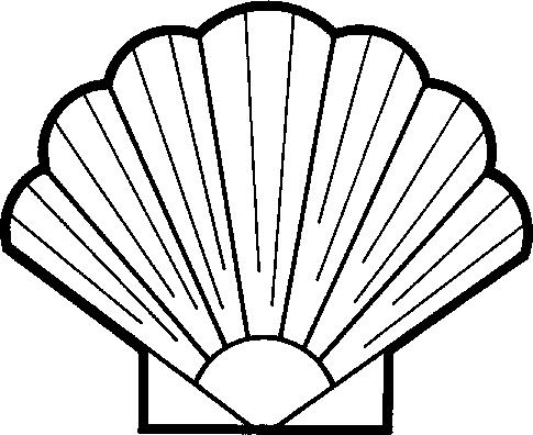 Shell Clip Art & Shell Clip Art Clip Art Images.