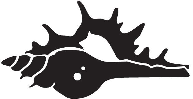 Conch Shell Silhouette at GetDrawings.com.