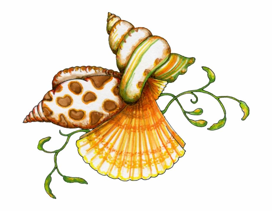 Seashell Shell Clip Art Black And White Sea Clipart.