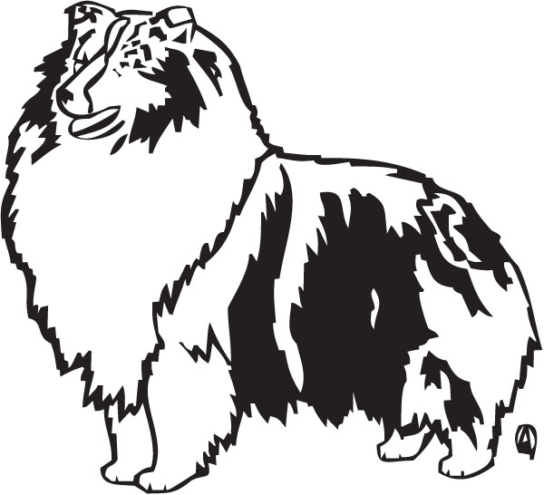 free printable sheltie coloring pages - photo#5
