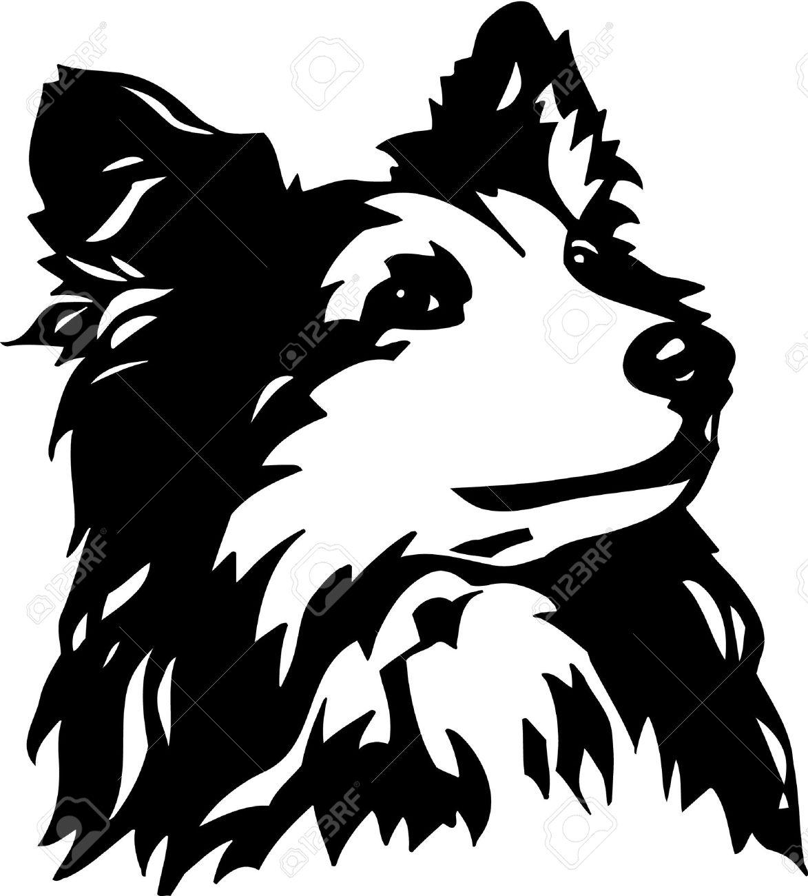 Shetland Sheepdog Clipart.