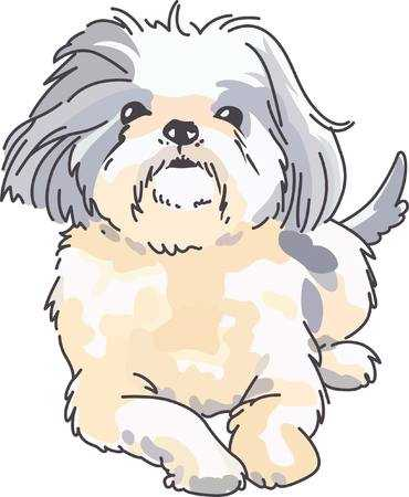 Shih Tzu Clip Art (96+ images in Collection) Page 1.