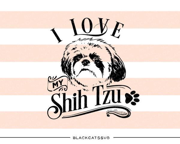 I love my Shih Tzu.