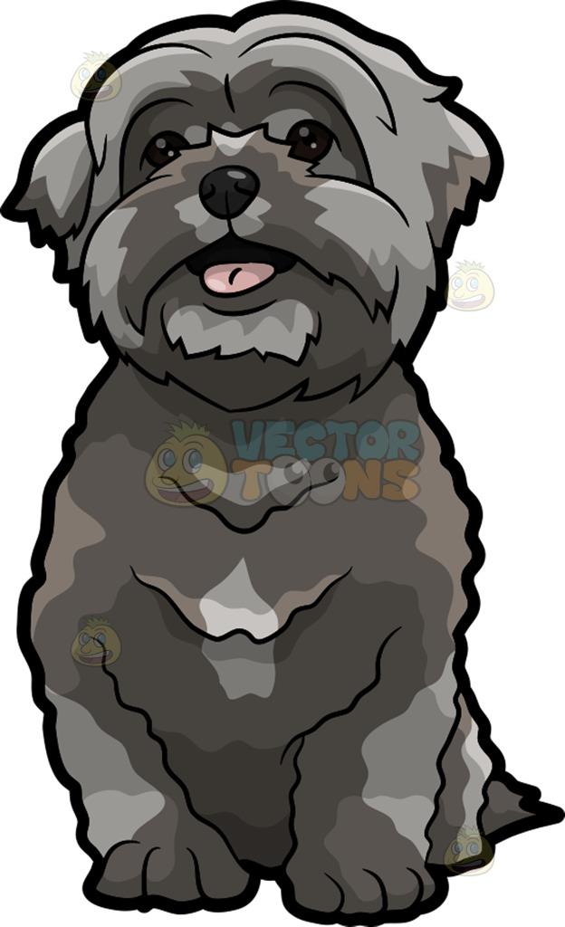 A Super Cute Shih Tzu Puppy Cartoon Clipart.