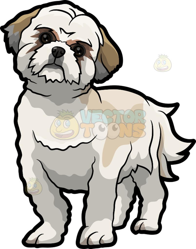 Clipart shih tzu dogs outline.