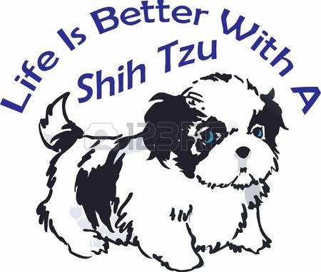 255 Shih Tzu Stock Illustrations, Cliparts And Royalty Free Shih.