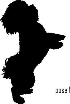 silhouettes on Pinterest.