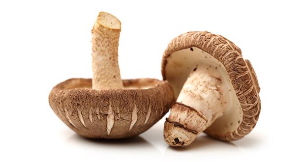Fresh shitake mushroom.