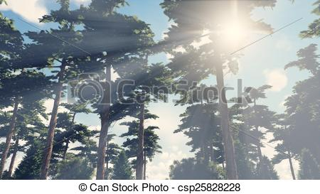 Clip Art of Sunbeams shine through the pines 3.