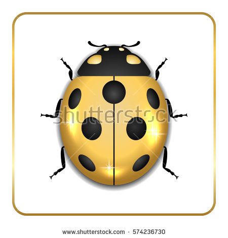 Golden Beetle Stock Images, Royalty.